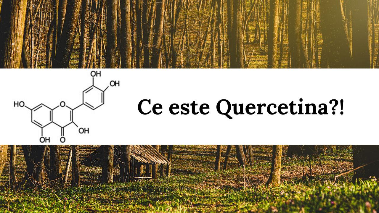 Ce este Quercetin?